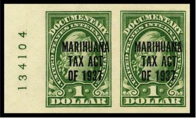 Konopí nebo marihuana?