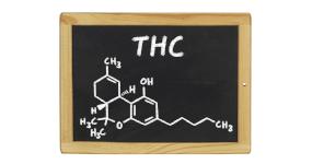 Jaké účinky má THC?