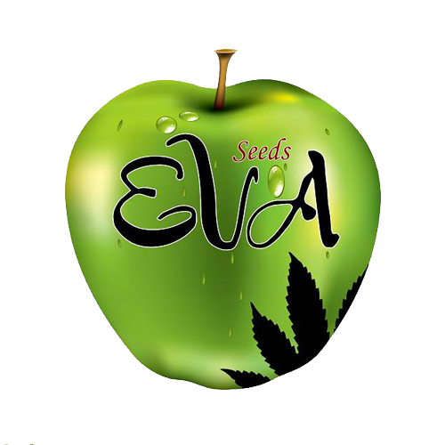Eva seeds Papas Candy 9ks