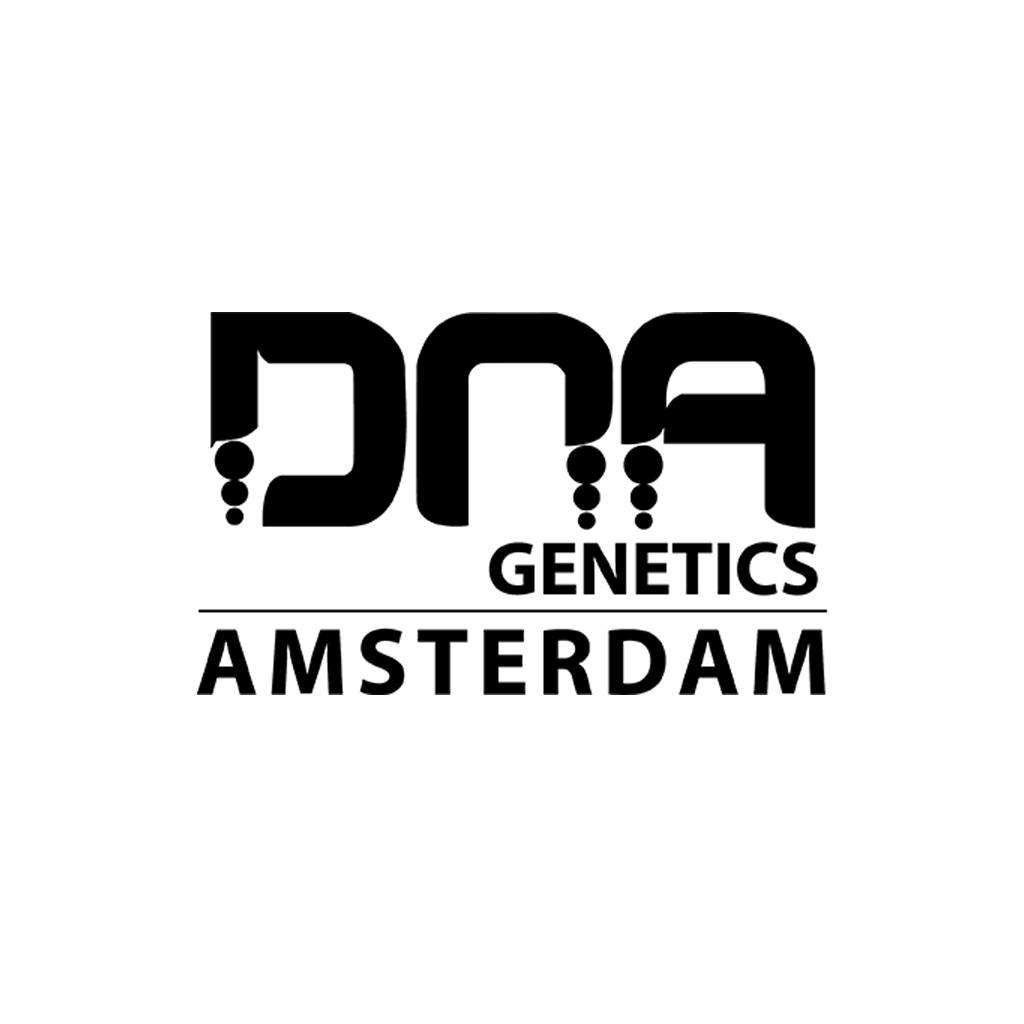 DNA Genetics DJ´s Gold 3ks