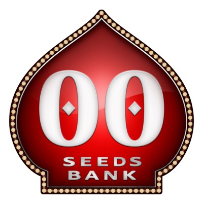 00 Seeds Bubble Gum 5ks fem.