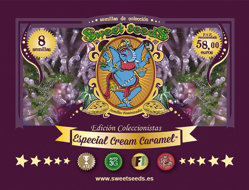 Sweet Seeds Cream Caramel Special 8ks