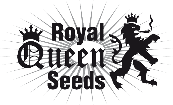 Royal Queen Seeds Medical Mix 3ks (Feminizovaná)