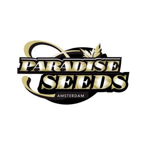 Paradise Seeds Autoflowering Mix 2 6ks autoflowering (Autoflowering)