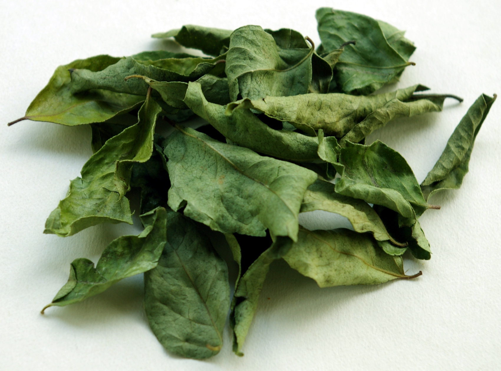 Curry Leaves (sušené celé lístky) (Koření)