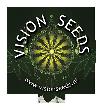 Vision Seeds AK-49 Auto 5ks