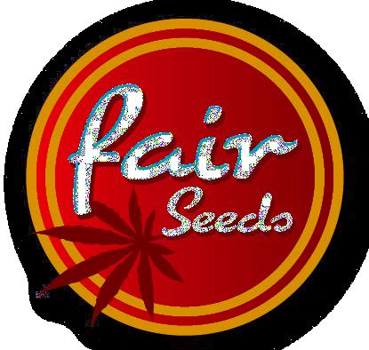 Fair Seeds Indoor mix 10ks (Feminizovaná)