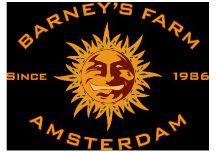Barney´s Farm Morning Glory 10ks (Feminizovaná)