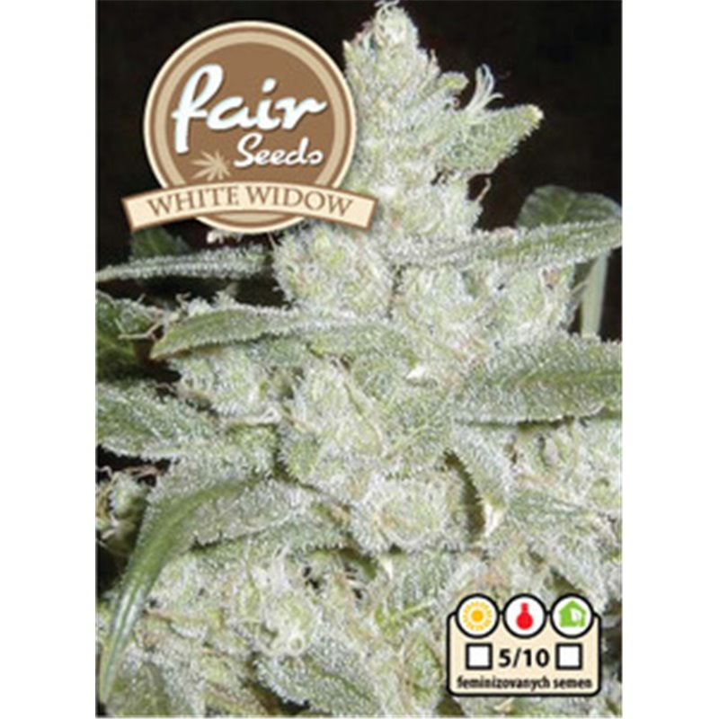 Fair Seeds White Widow 5ks