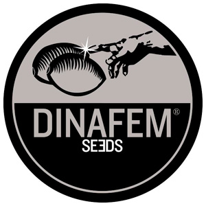 Dinafem Seeds  Blue Widow 5ks