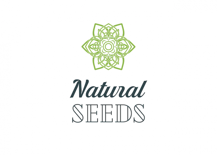Natural Seeds Bud Forty5 36ks