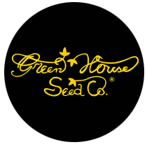 Green House Seeds Himalaya Gold 5ks