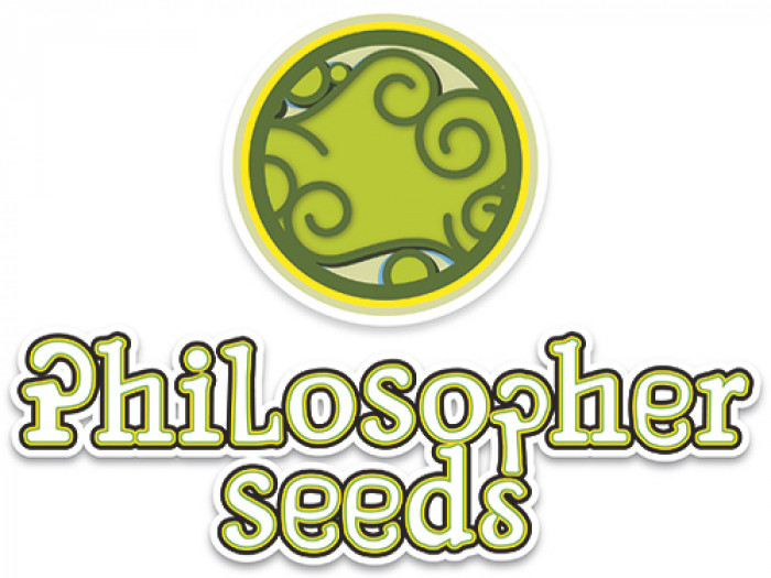 Philosopher Seeds CLASSIC line Early Maroc 3ks