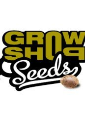 Growshop Seeds Critical 10ks