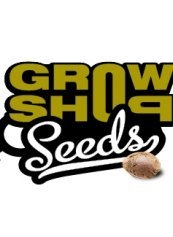 Growshop Seeds Auto Blueberry 10ks