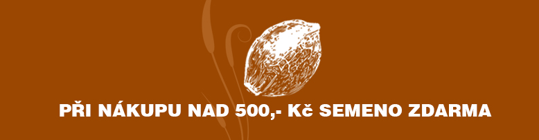 slide /fotky46739/slider/banner_mojesemeno_1_orange.jpg